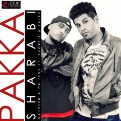 Dr Zeus Partners With Rajveer for Groundbreaking Single 'Pakka Sharabi'